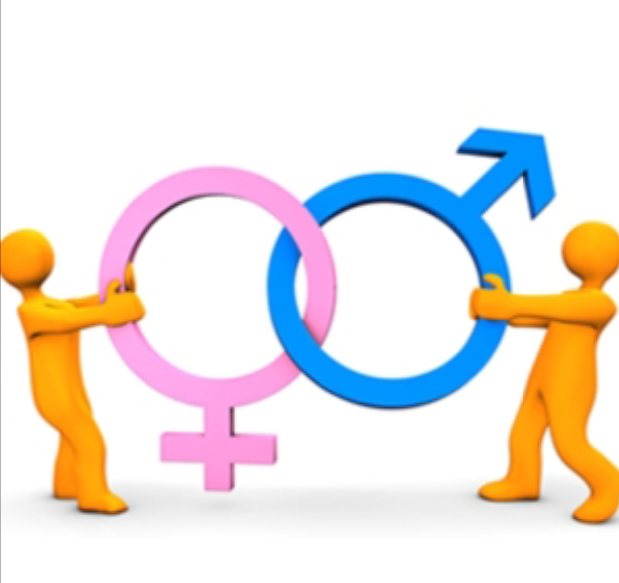 GENDER AS A SOCIAL CONSTRUCT - SlideShare